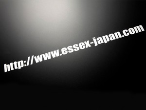 ES アドレスステッカー(大) 610×45mm